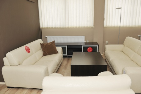 modern livingroom indoor with new furniture and home decorations Stock Photo - 9296168