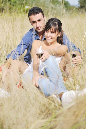 happy young couple enjoying  picnic on the countryside in the field  and have good time Stock Photo - 8768789