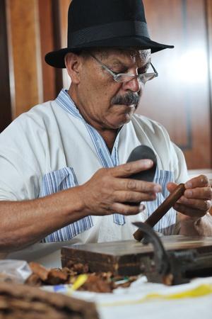 cigare: older senior man making luxury handmade cuban cigare Stock Photo