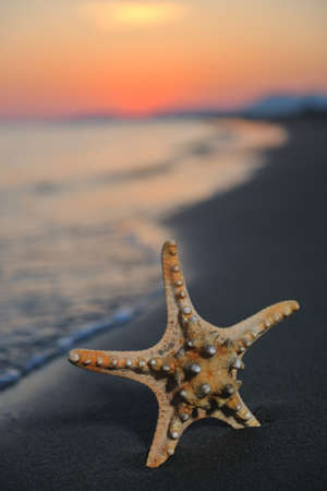 summer beach sunset with star on beach representing freedom freshnes and travel concept Stock Photo - 9639601