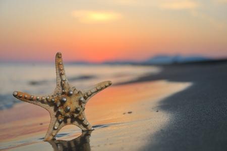 estrella de la vida: puesta de sol de verano playa con estrella en la playa que representa el concepto de libertad freshnes y viajes