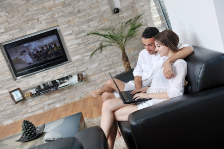 joyful couple relax and work on laptop computer at modern livingroom indoor home Stock Photo - 17381314