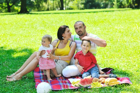 happy young couple with their children have fun at beautiful park outdoor in nature Stock Photo - 10415038