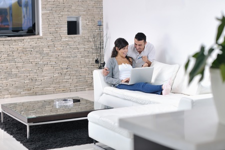 modern living room: joyful couple relax and work on laptop computer at modern living room indoor home Stock Photo