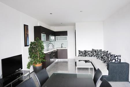 Modern bright home living room interior photo
