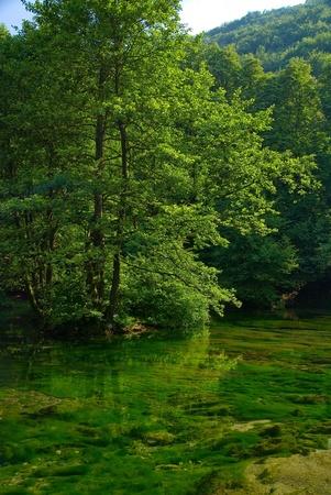 echo: lake in pure, nature Stock Photo