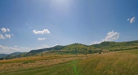 summer landscape   (No shot settings) photo
