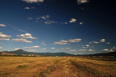 rural field farming photo