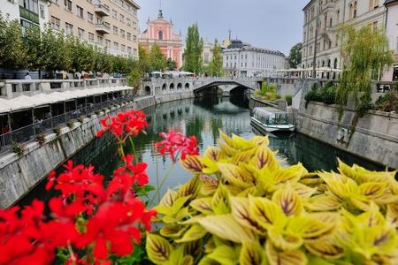city  Ljubljana, capital of Slovenia with old bridge flower and river