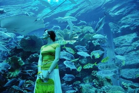 young woman  with big blue aquarium withmany  fish in background photo