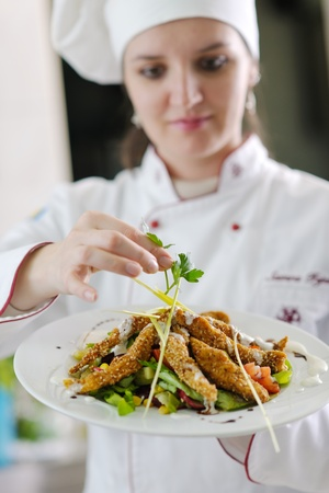 beautiful young chef woman prepare and decorating tasty food in kitchen Stock Photo - 13276502