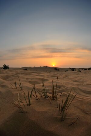 sunset with blue sky and clouds over sand dunes in sahara desert Stock Photo - 13940578