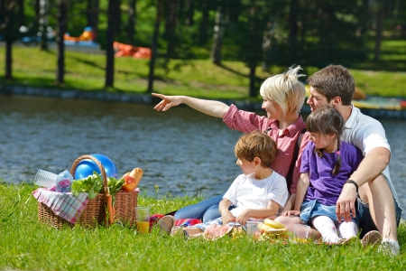 family grass: Happy young  family playing together with kids and eat healthy food  in a picnic outdoors