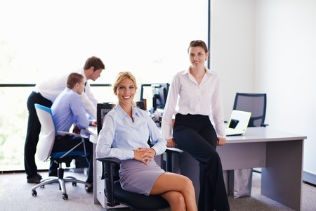 business woman  with her staff,  people group in background at modern bright office indoors Stock Photo - 15395431