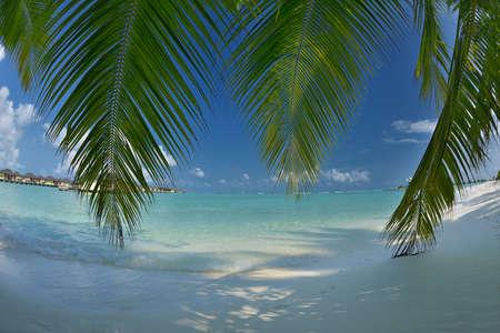 caribbean island: beautiful tropical beach background landscape nature sunset Stock Photo