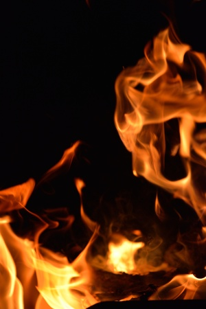 isoleted: Fire flames  design isoleted on black background