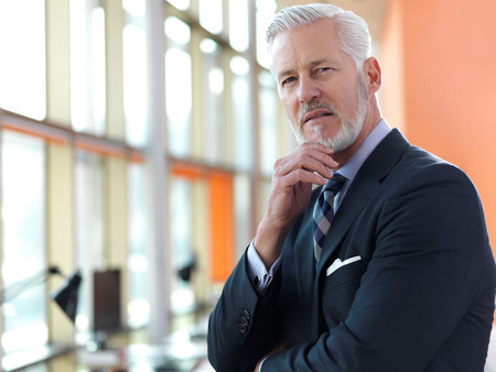 man with beard: portrait of senior business man with grey beard and hair alone i modern office indoors Stock Photo
