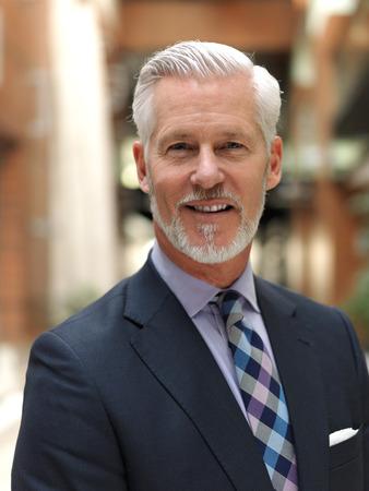 シニア ビジネスの男性と灰色のひげと髪だけ近代的なオフィス屋内の肖像画 写真素材