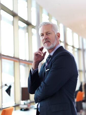 white beard: portrait of senior business man with grey beard and hair alone i modern office indoors Stock Photo