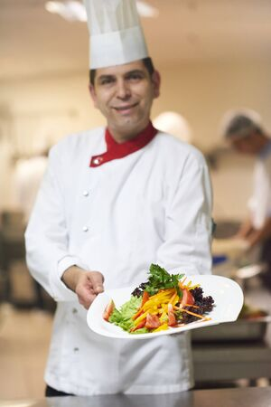 dinner food: chef in hotel kitchen preparing and decorating food, delicious vegetables and meat  meal dinner Stock Photo