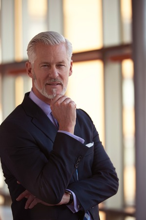 gray suit: portrait of senior business man with grey beard and hair alone i modern office indoors Stock Photo