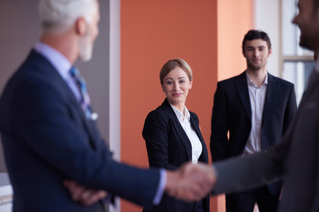 business partnership: business partners, partnership concept with two businessman handshake Stock Photo