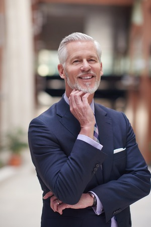 mature businessman: portrait of senior business man with grey beard and hair alone i modern office indoors Stock Photo