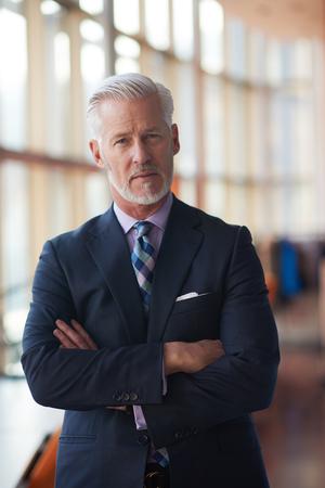 beard: portrait of senior business man with grey beard and hair alone i modern office indoors Stock Photo