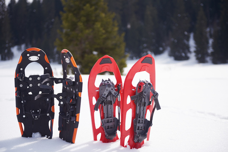 trave: snowshoes in fresh show on beautiful winter sunny day