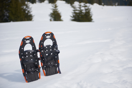snowshoes: snowshoes in fresh show on beautiful winter sunny day