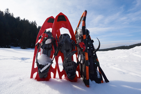 snow forest: snowshoes in fresh show on beautiful winter sunny day