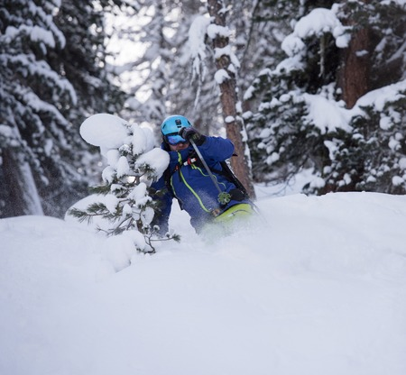 deep powder snow: extreme freeride skier skiing on fresh powder snow in forest downhill at winter season Stock Photo