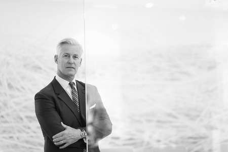 portrait of handsome senior business man at modern office meeting room interior Reklamní fotografie