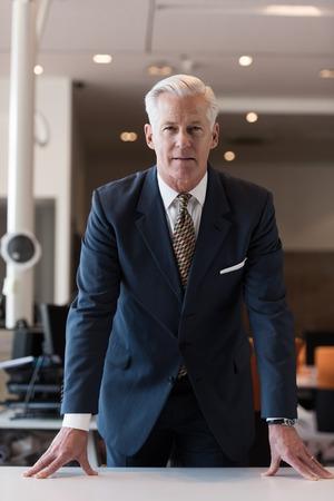 hait: portrait of handsome senior business man with grey hait at modern bright office interior Stock Photo