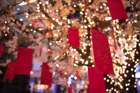red cards with messages on the traditional Japanese wishing tree