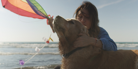 Beautiful Young Woman with dog Holding A Kite at Beach Stock Photo