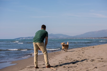 man with dog enjoying free time on the beach at autumn day
