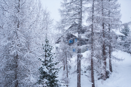 Winter landscape with Village house hidden behind the trees and covered with snow. Archivio Fotografico - 110740892