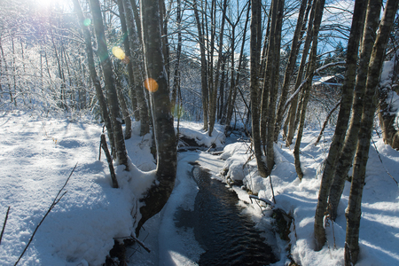 Small creek covered with fresh snow and ice on beautiful sunny winter day 写真素材