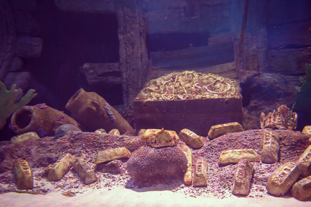 Empty aquarium decor with opened chest with treasures and golden bars Reklamní fotografie