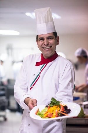 young Chef presenting a plate of tasty meal in commercial kitchen