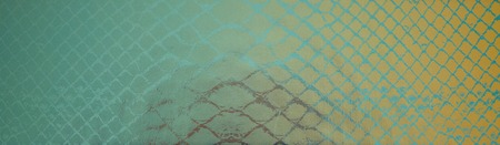 snake skin abstract background texture pattern Stock Photo