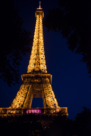 The light of Eiffel Tower at night in Paris France