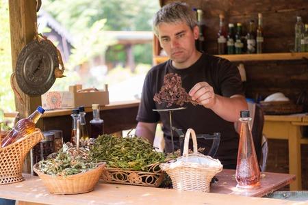 Herbalist gardener small business owner picking gathering fresh herbs for alternative medicine tea and putting on balance Stock fotó