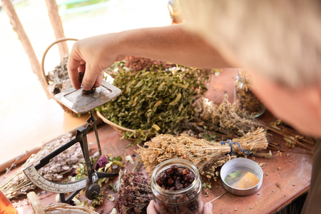 Herbalist gardener  small business owner picking gathering fresh herbs for alternative medicine tea and potting on balance