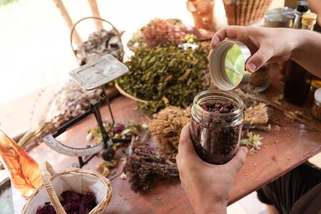 Herbalist gardener small business owner picking gathering fresh herbs for alternative medicine tea and potting on balance Stock fotó