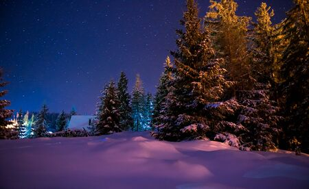 Beautiful winter night landscape with starry sky and snow covered trees