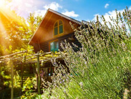 Luxus-Familienhaus aus Holz im Wald mit Garten und bunten Kräutern