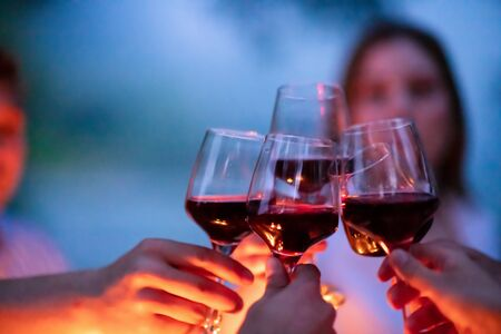 group of happy friends toasting red wine glass while having picnic french dinner party outdoor during summer holiday vacation  near the river on beautiful evening in nature