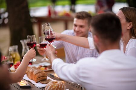 group of happy friends toasting red wine glass while having picnic french dinner party outdoor during summer holiday vacation  near the river at beautiful nature Imagens